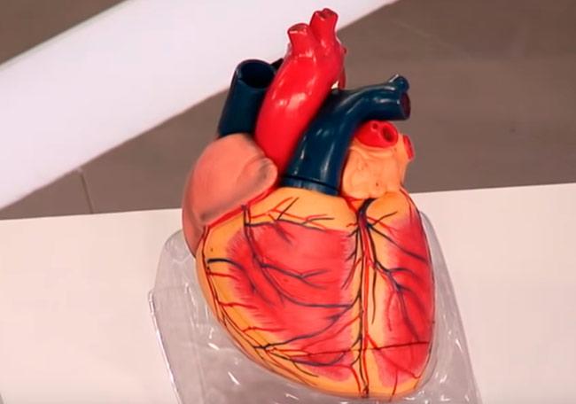 Сердечная астма – симптомы и лечение у взрослых